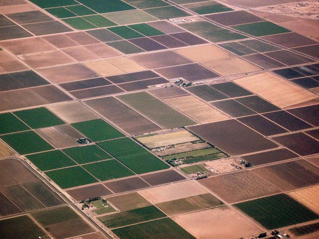 Aerial view of cropland patchwork