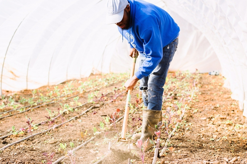 a young African-American man tilling the soil