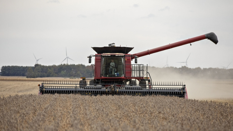 a farmer harvesting soybeans