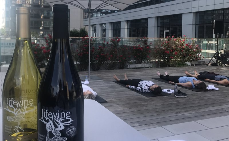 Bottles of LifeVine, a wine brand that boasts low sugar and higher antioxidants than most wines.