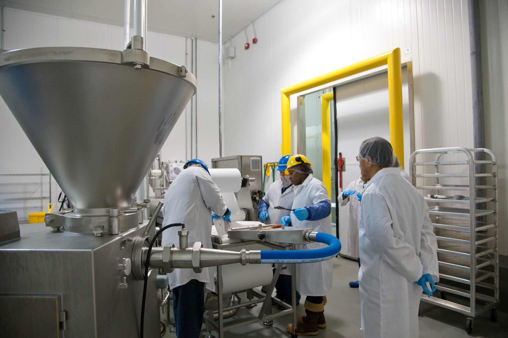 Workers in white coats, blue gloves, yellow and blue hard hats work at a large stainless steel machine with a hopper, a pipe and a chute, in a large room with white walls.