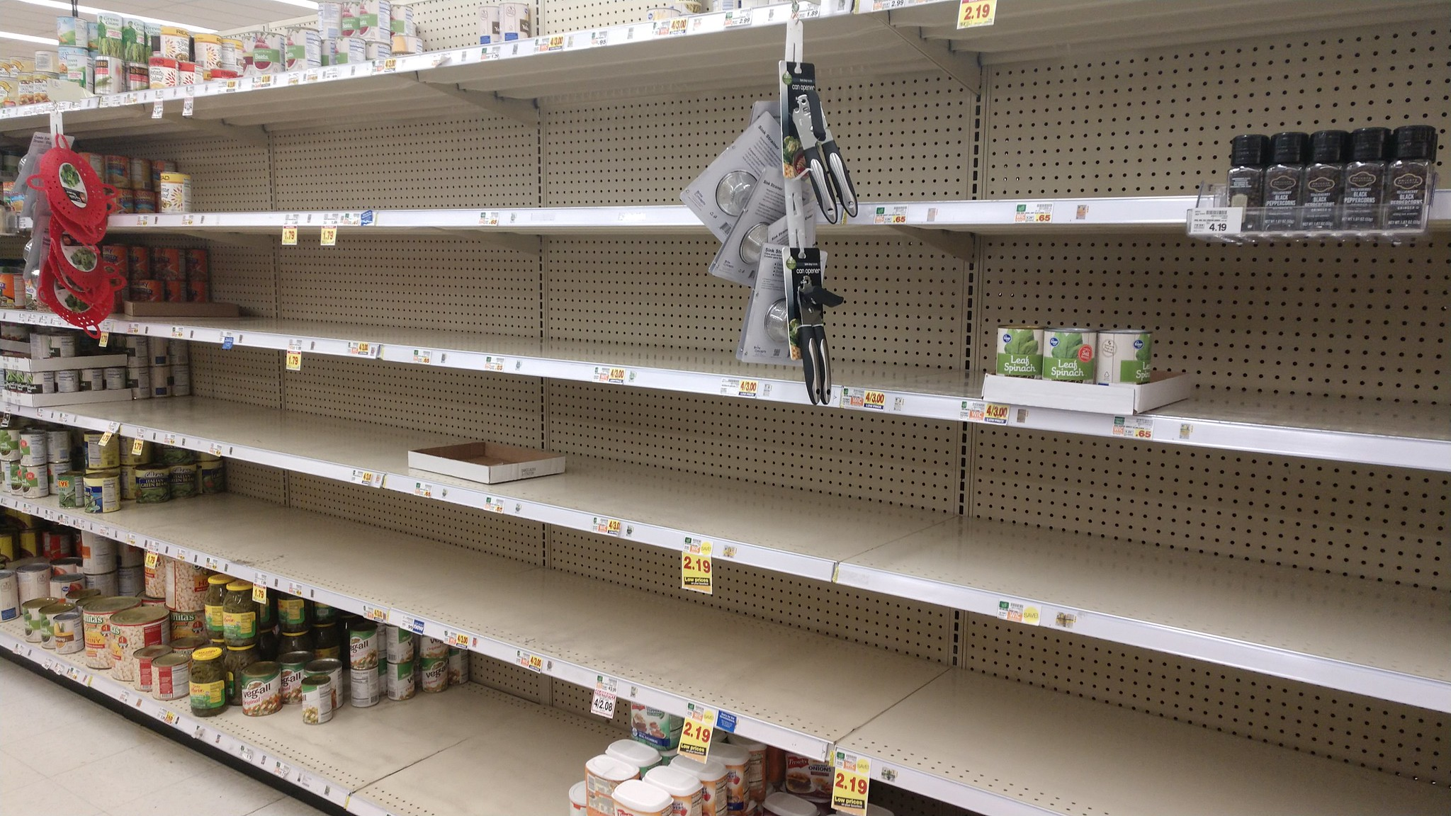 Nearly empty grocery store shelves, in the canned goods section.