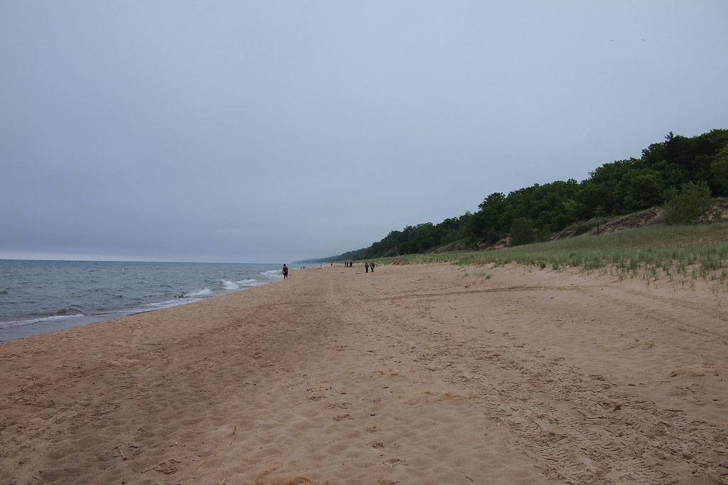 shore of Indiana Dunes