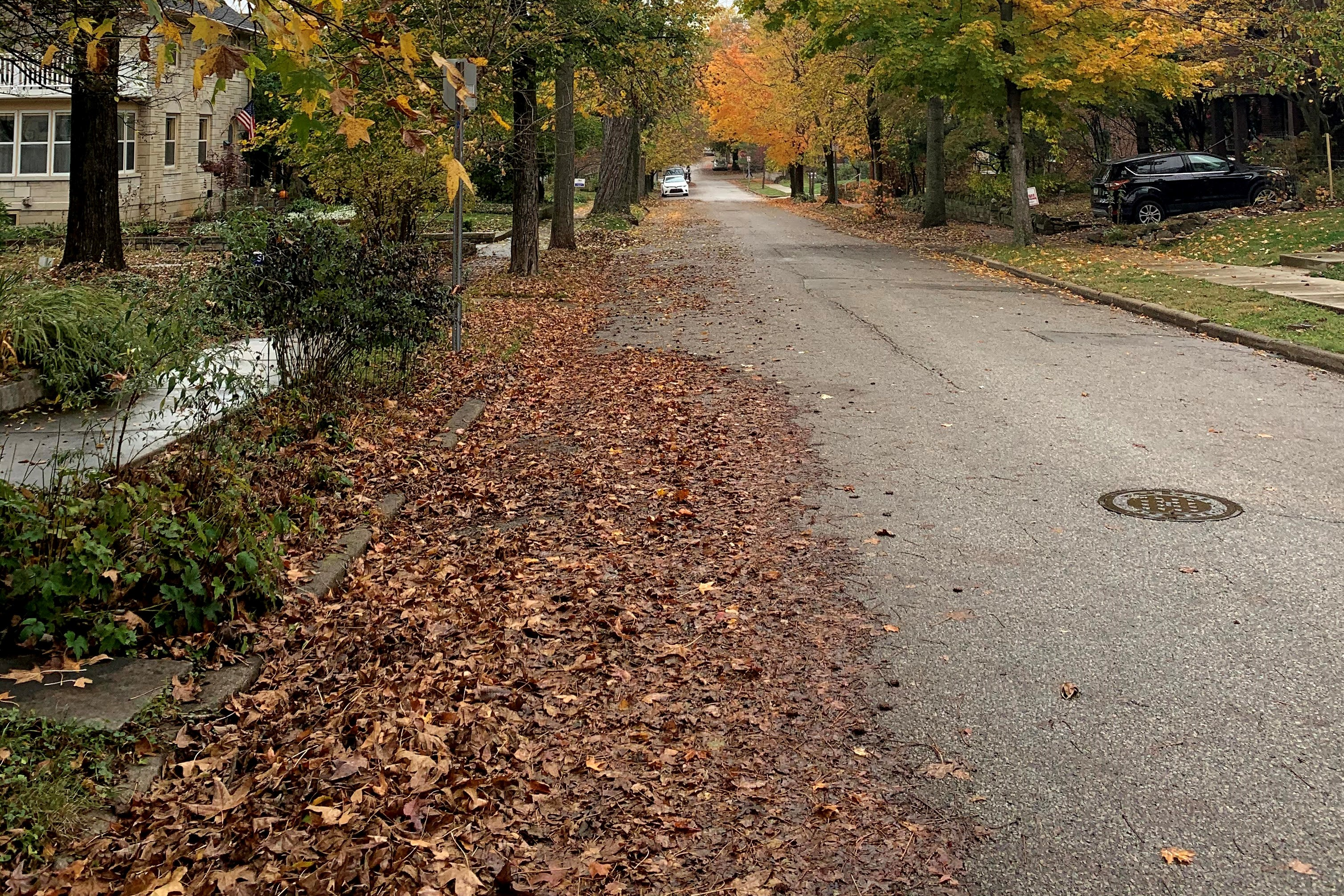 A photo of autumn leaves and yard waste in a Bloomington street.