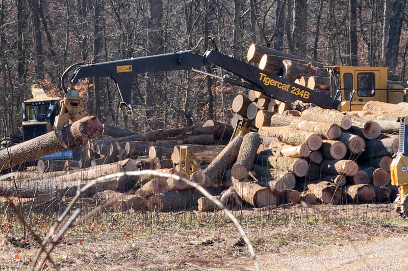 A crane moves a felled tree onto a pile of logs at a logging operation