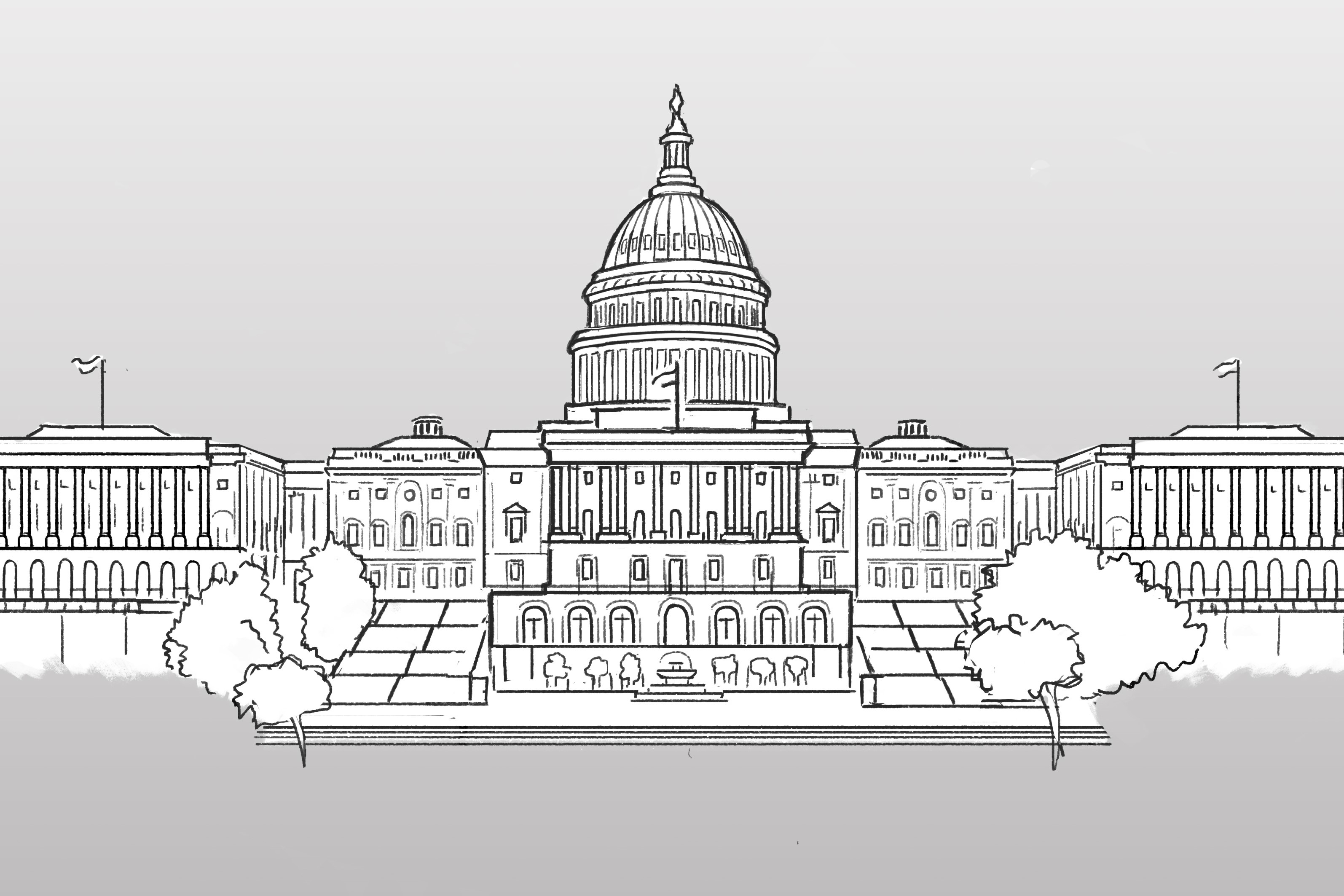 An NPR graphic of the Capitol building in Washington, D.C.