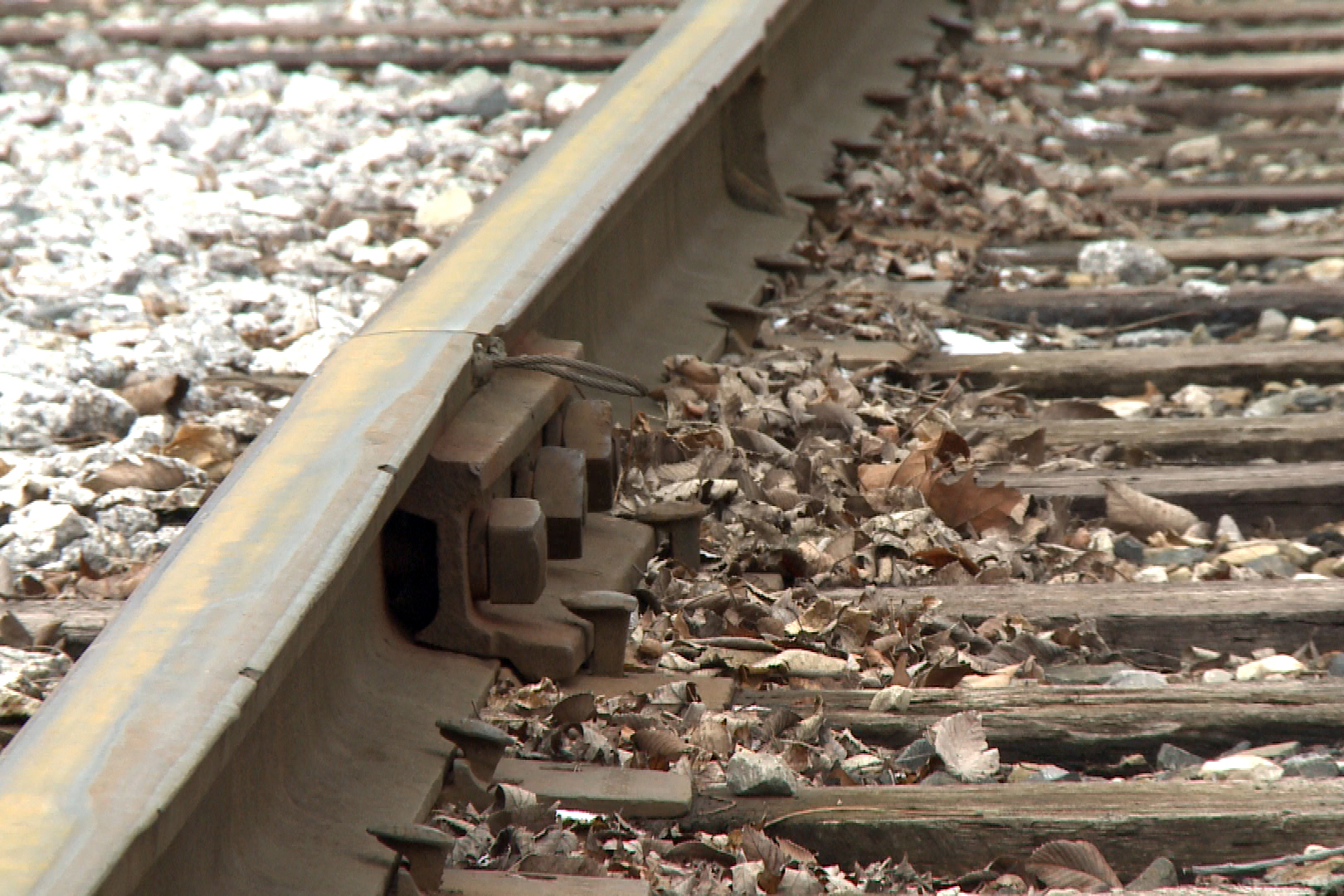 A close-up shot of train tracks.