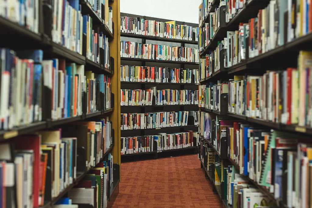 Shelves of books.
