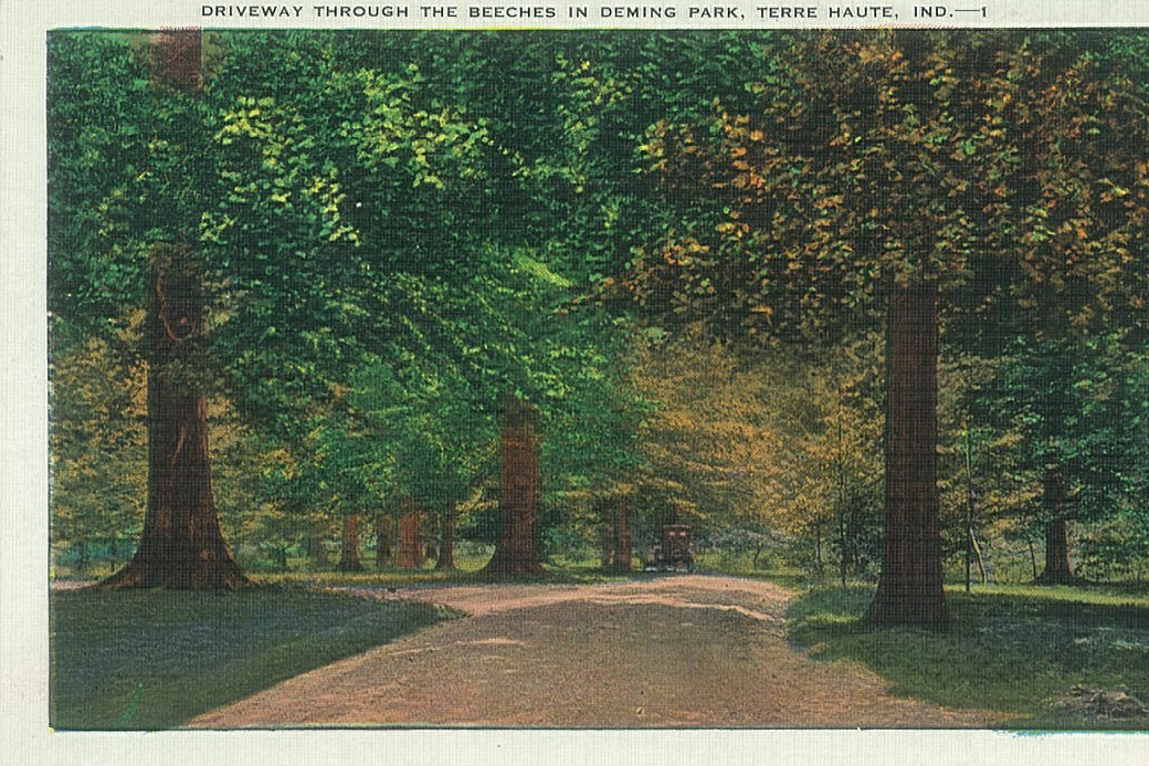 a postcard of deming park terra haute indiana