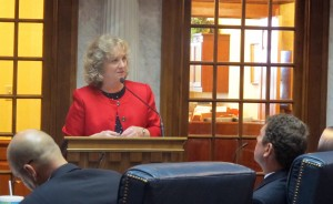 Superintendent of Public Instruction Glenda Ritz explains her vision for Indiana's next test to a panel of state lawmakers tasked with reviewing academic standards.
