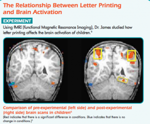 A copy of brain scans from James research, printed in 'A Summary of Research Presented at Handwriting in the 21st Century?  An Educational Summit'.