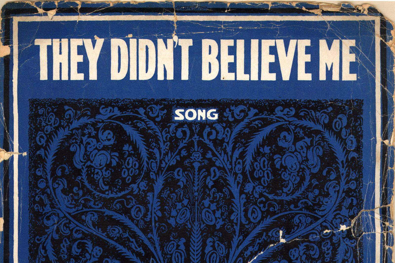 They_Didn't_Believe_Me_cover