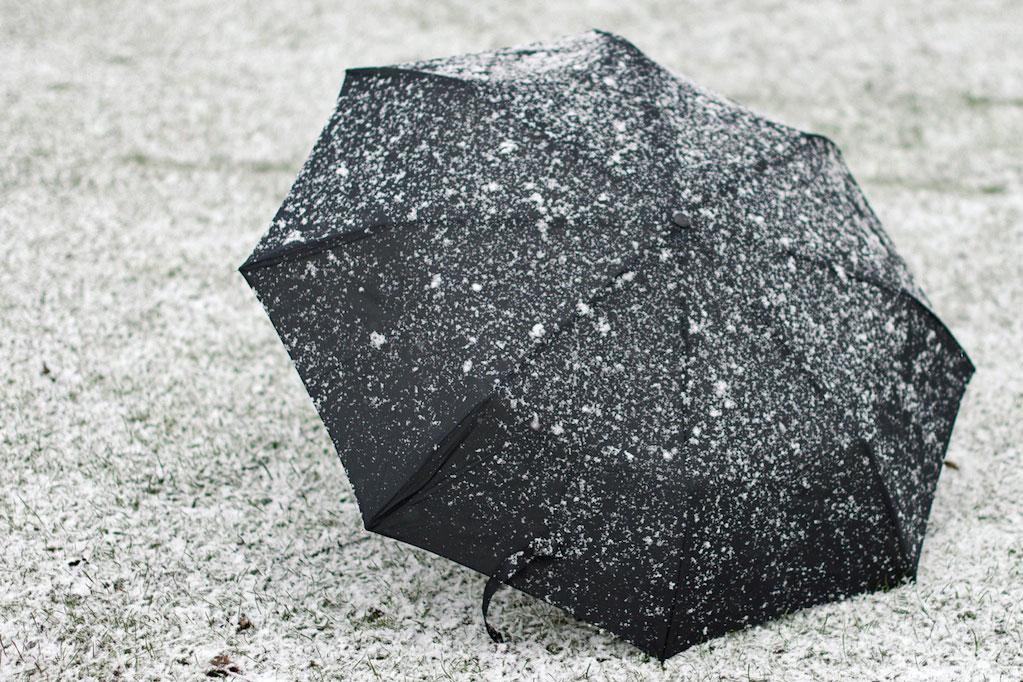 umbrella covered in snow