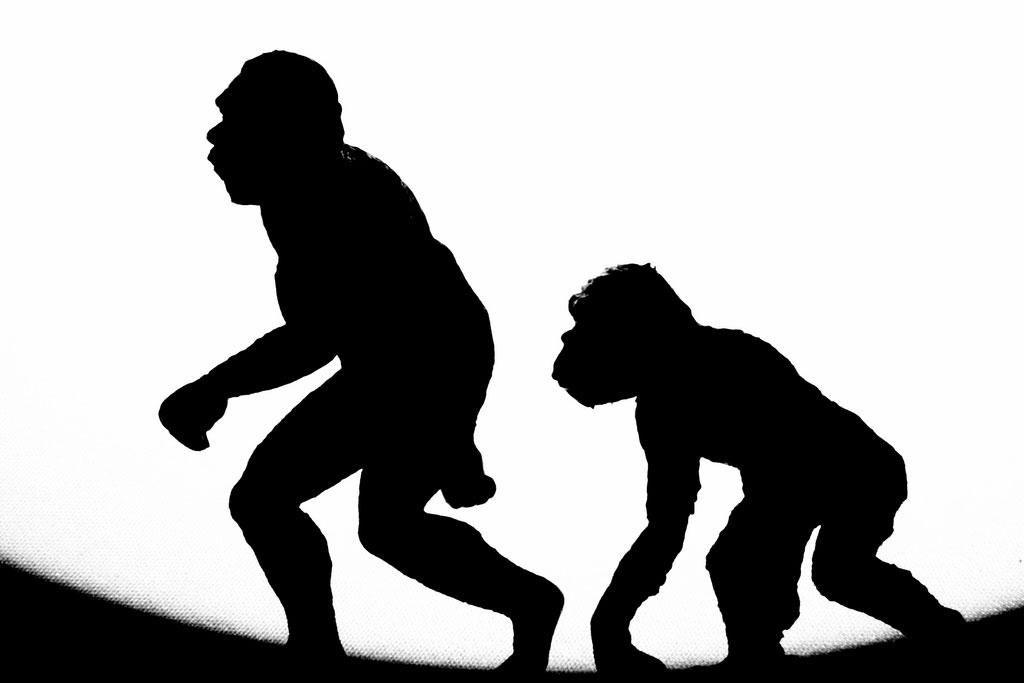 cavemen evolving in black and white image