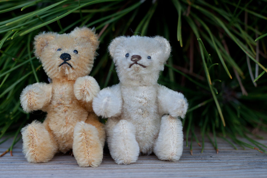 two stuffed animal bears sitting outside