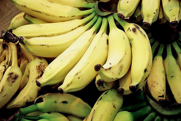 a collection of bananas, some with brown spots