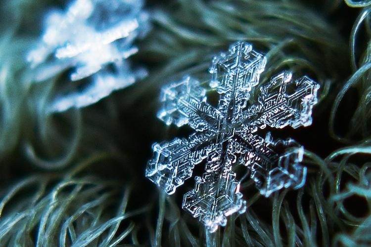 Macro view of a single snowflake