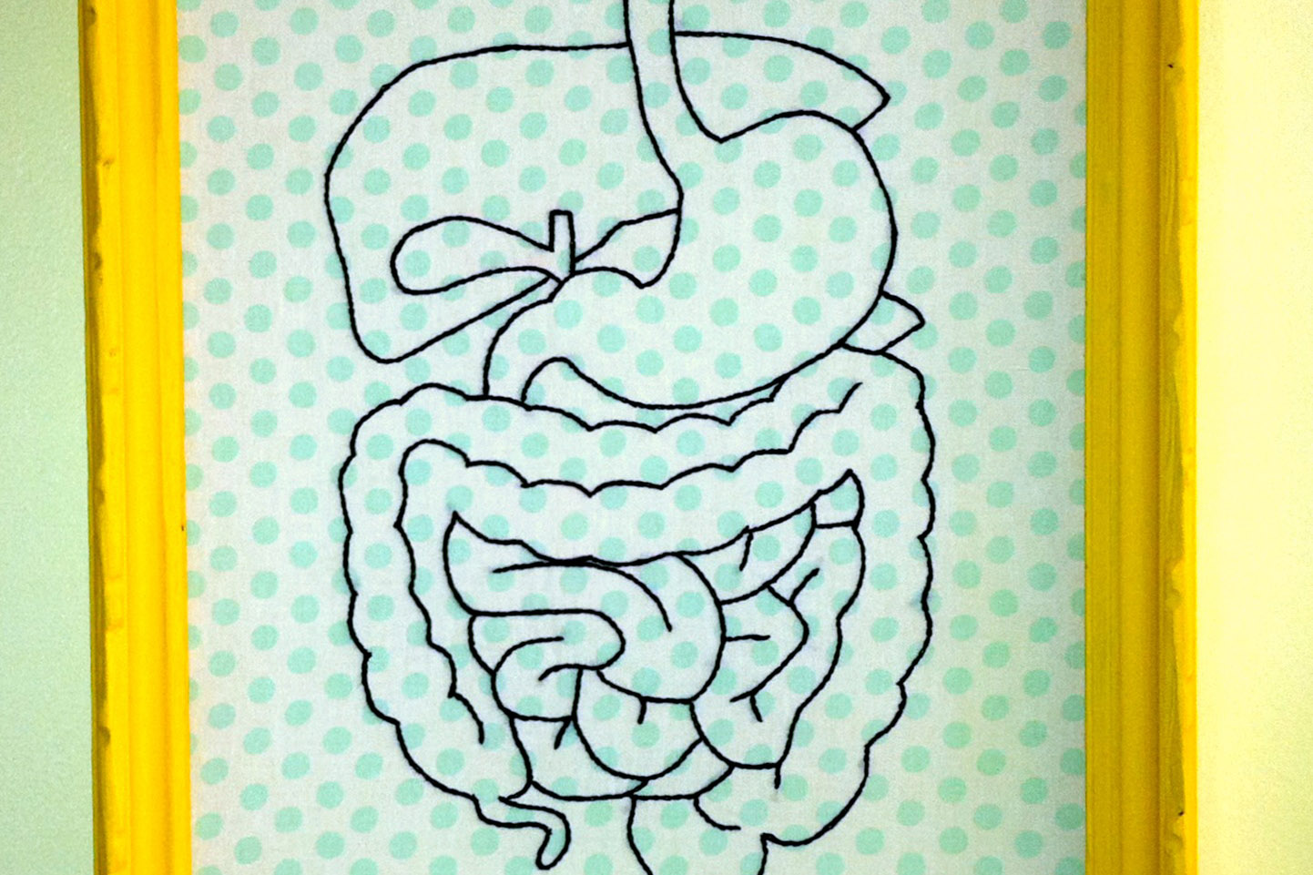 An embroidered representation of the average person's digestive system. Black thread on a mint and white polka dot background.
