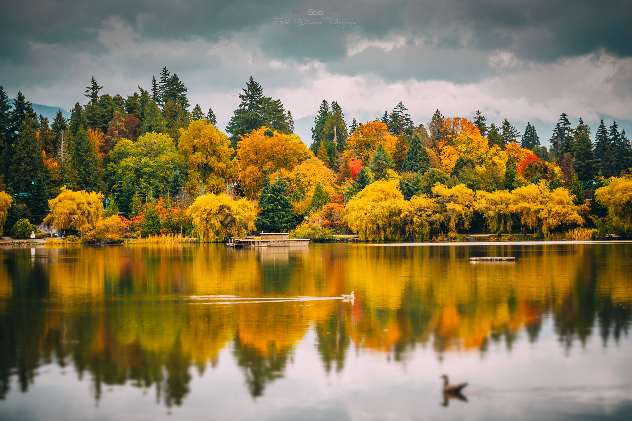 A lake with fall foliage. The autumn leaves are reflected in the lake.