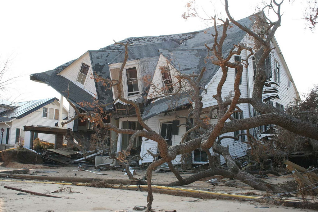 We're used to thinking of storm damage only in relation to human structures like in the photo above. (Barbara, Ambrose NOAA/NODC/NCDCC, Flickr)