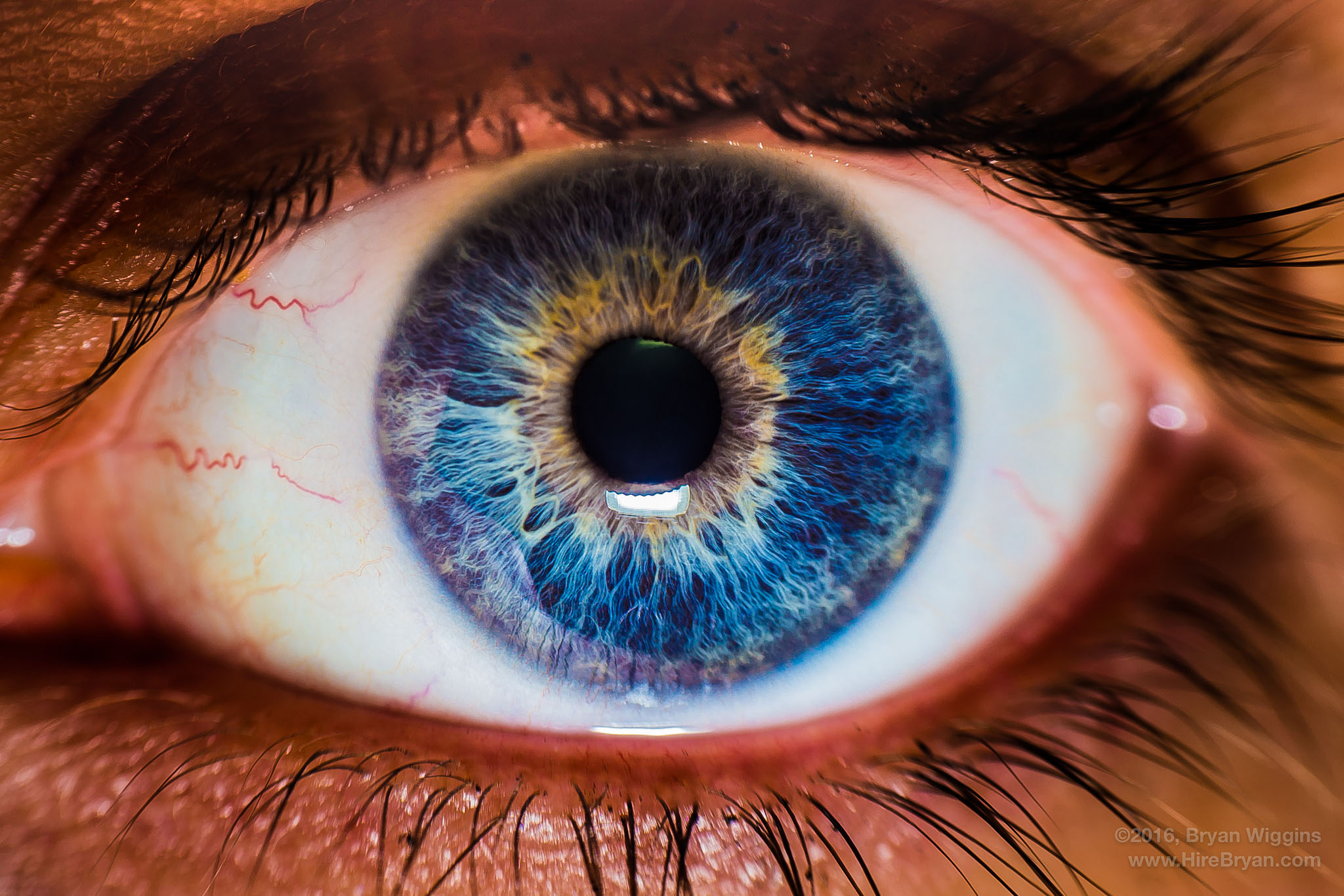 A close up on a woman's eye. Her cornea is transparent, but it's the part of her eye that covers the iris, pupil, and anterior chamber. (Bryan, Flickr)