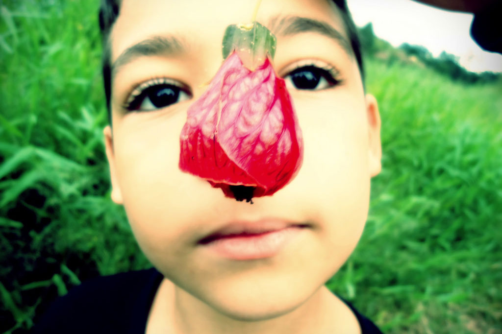 A child's nose covers up by a flower (deborascant, Flickr)