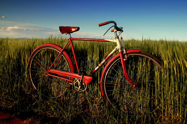 an old bicycle in a field of grass