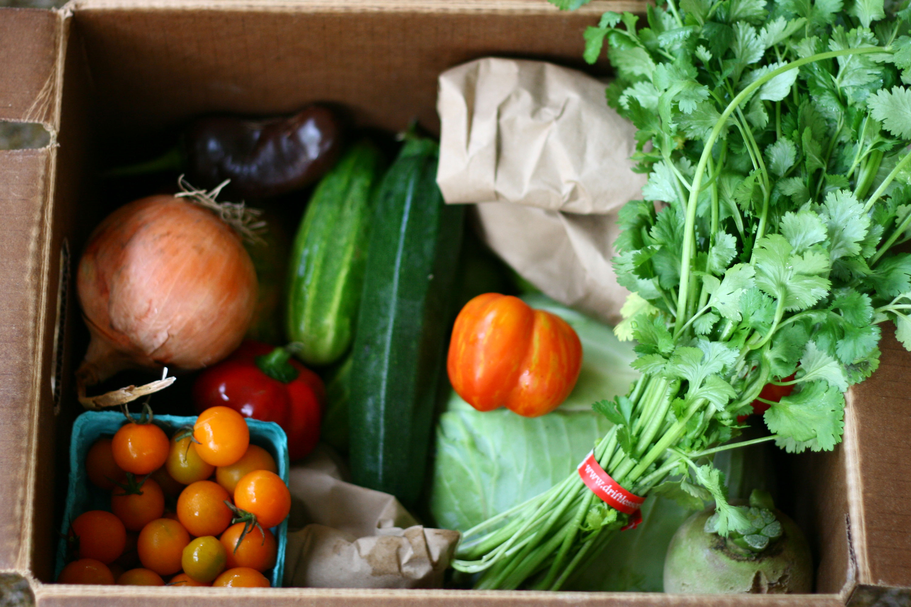 CSA box with tomatoes, parsley, cucumber, and onions