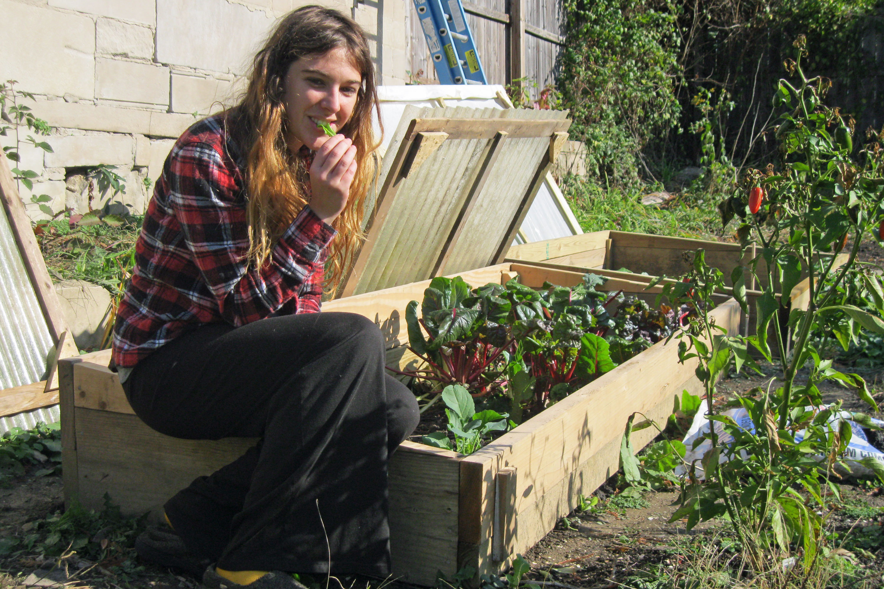Leigh Bush By Her Cold Frames