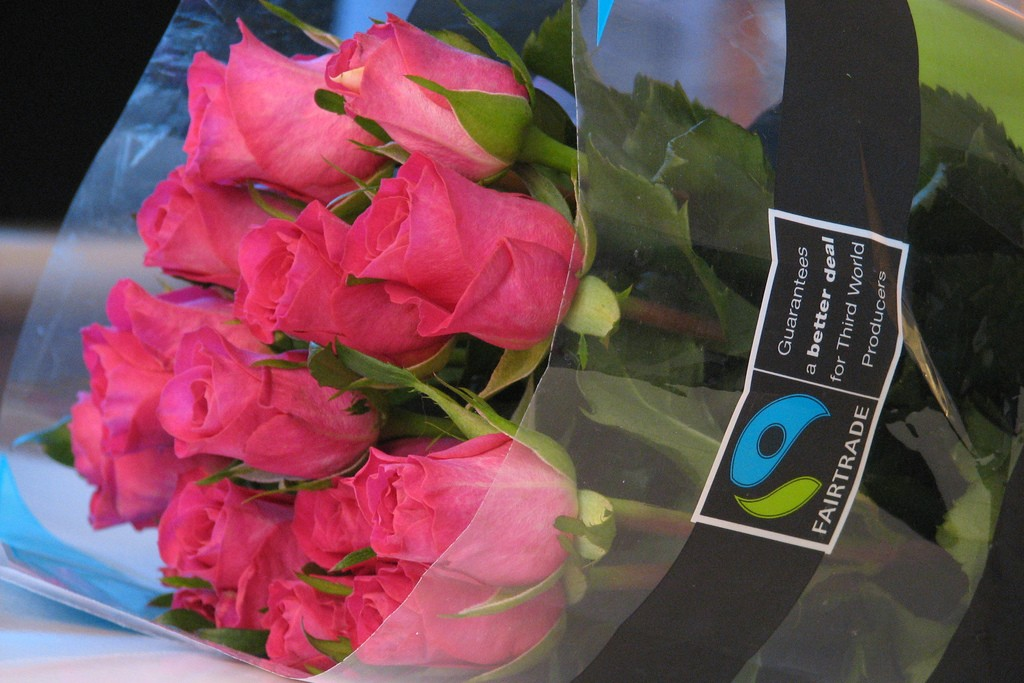 A bouquet of pink roses wrapped in plastic marked with the Fairtrade logo.