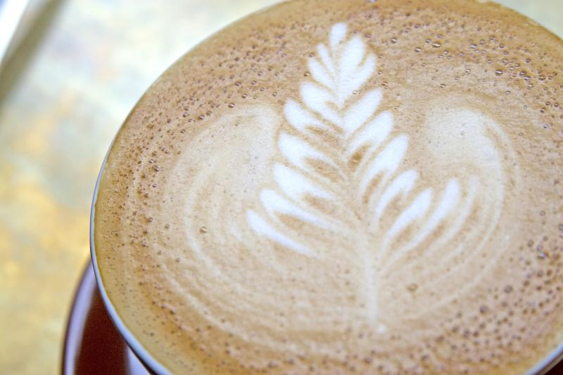 A pattern that looks like a spruce tree drawn on with espresso in the foam of a latte.