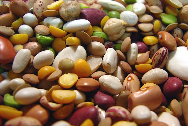mixed dried beans close-up
