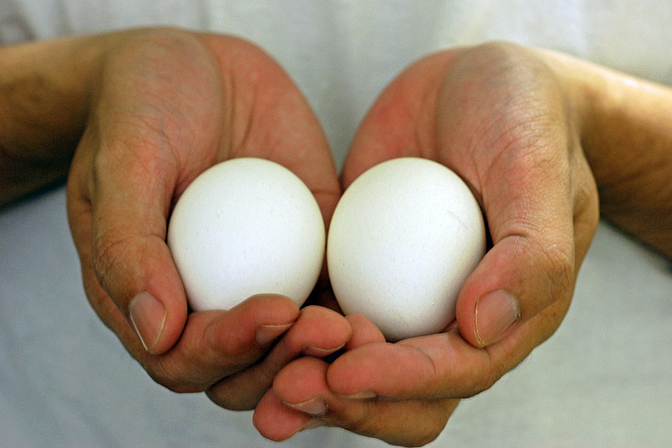 hands holding two eggs