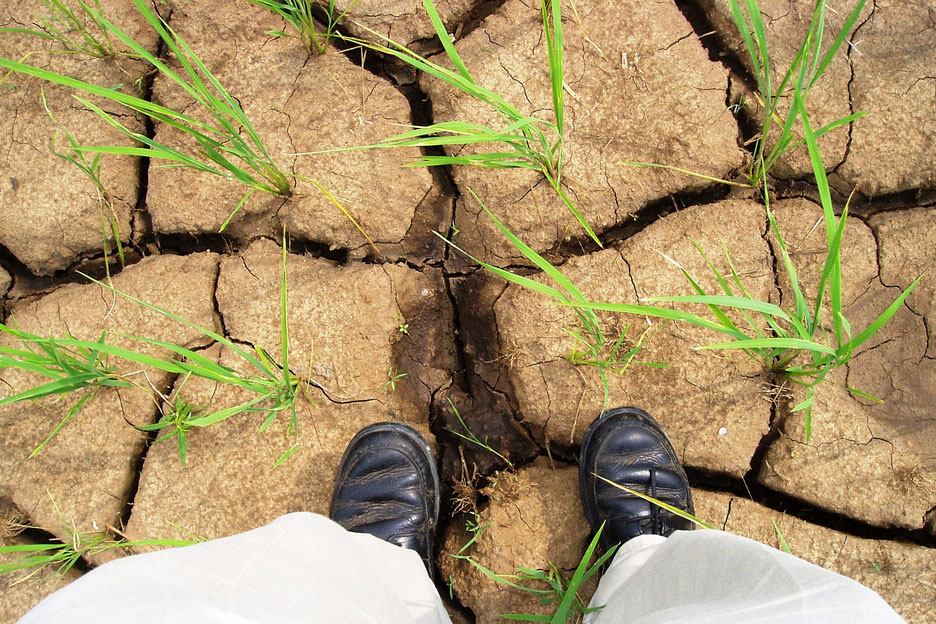 drought with feet