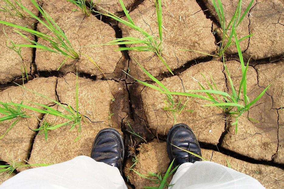 The feet of a person standing on earth that's so dry it's clumped and cracked.