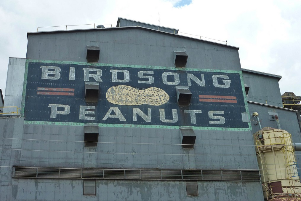 """The outside of a factory wall with a large graphic that says """"Birdsong Peanuts"""" painted on the side."""