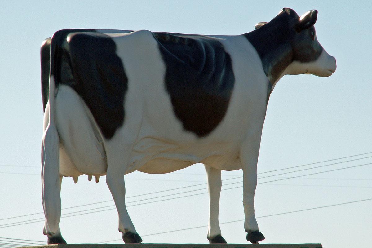 large ceramic cow