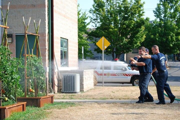 firefighters watering the garden