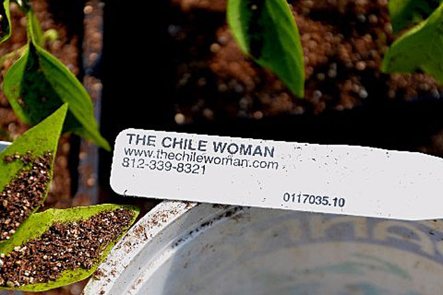the chile lady labels