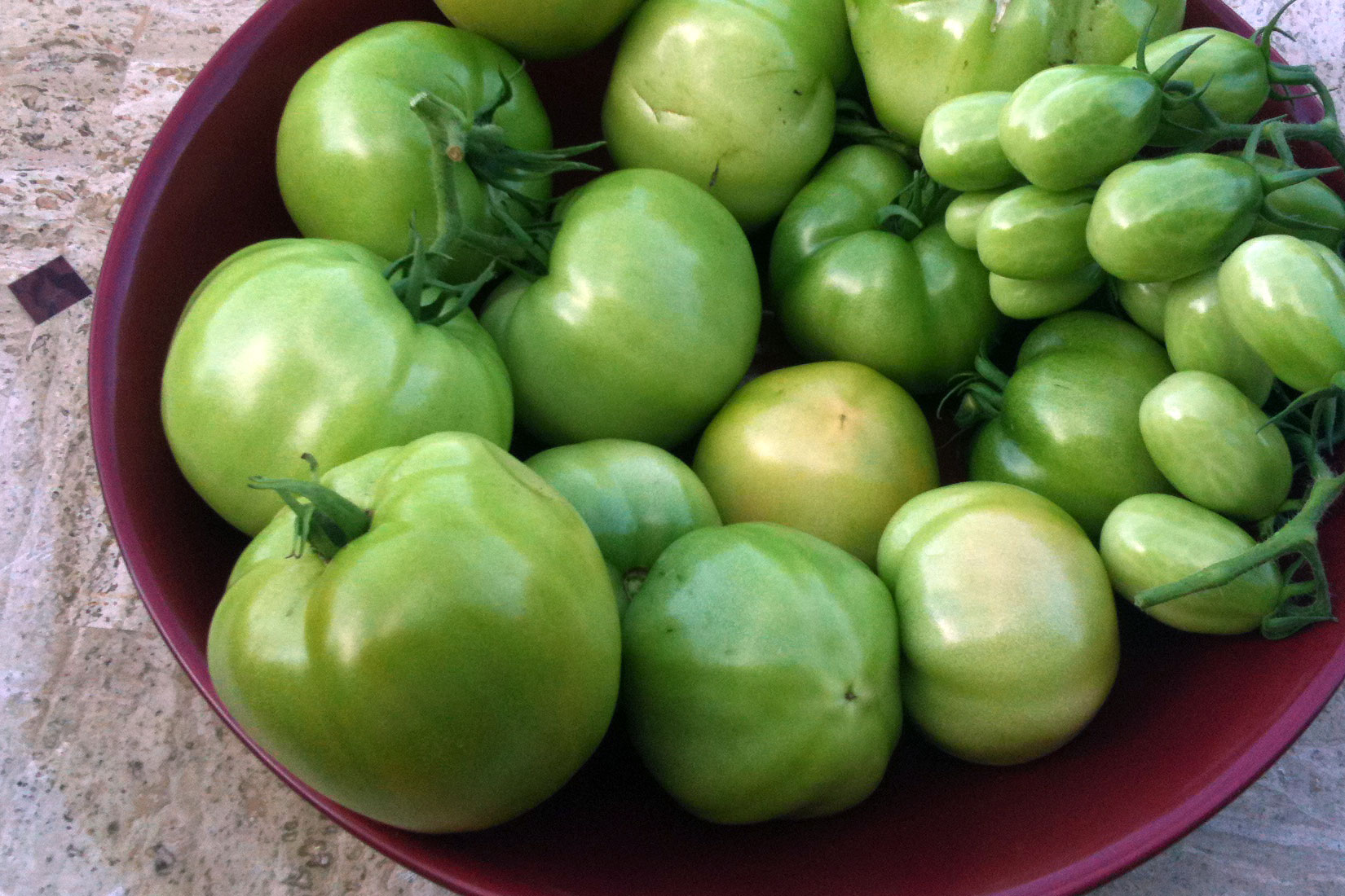 bowl of green tomatoes