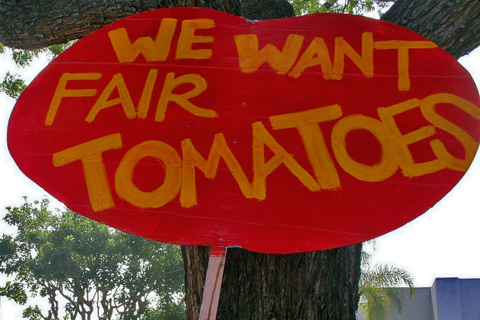 """A protest sign rests against the tree. The sign is red and shaped like a tomato, and it reads """"We Want Fair Tomatoes."""""""