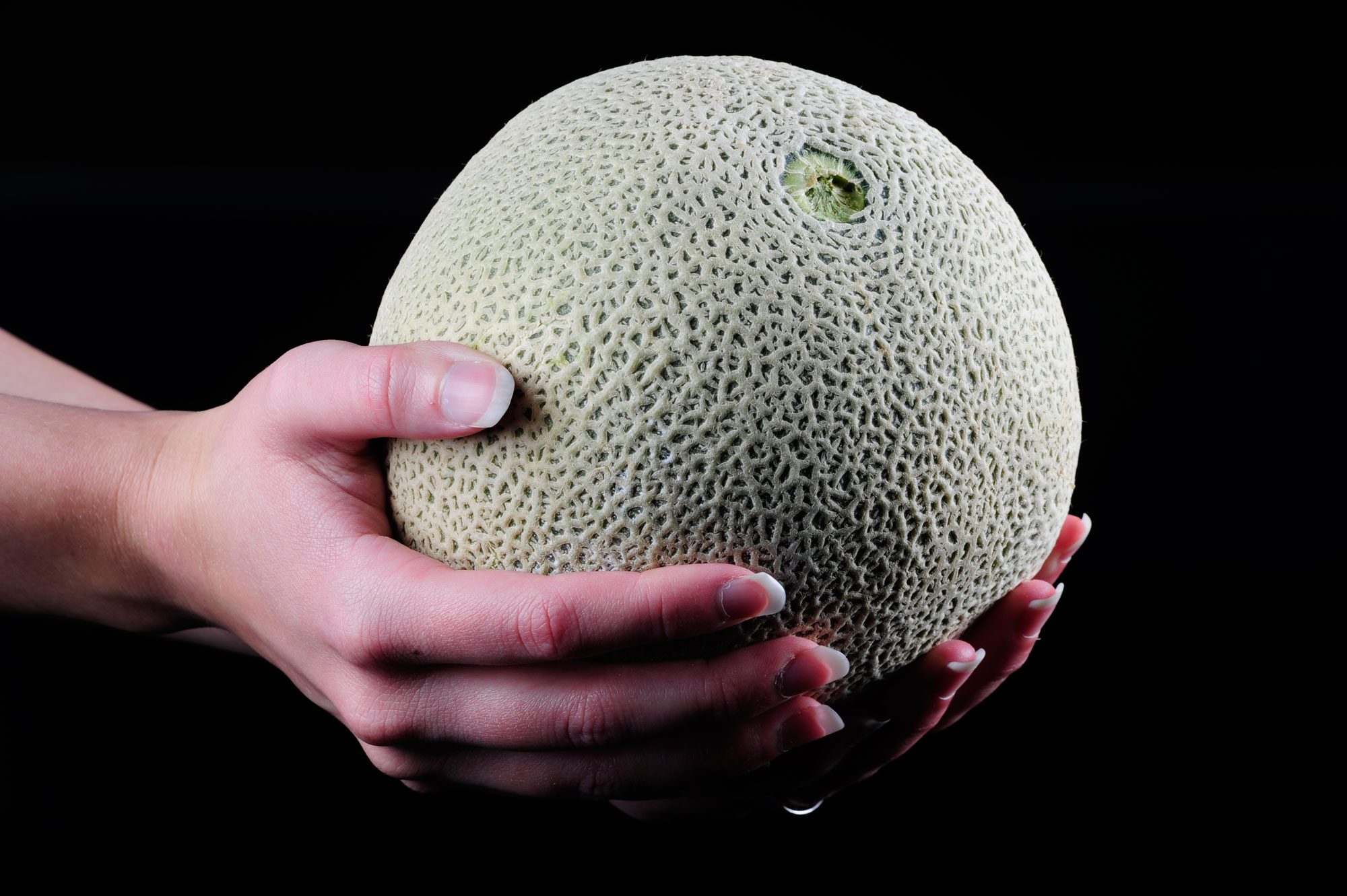 cantaloupe in hand