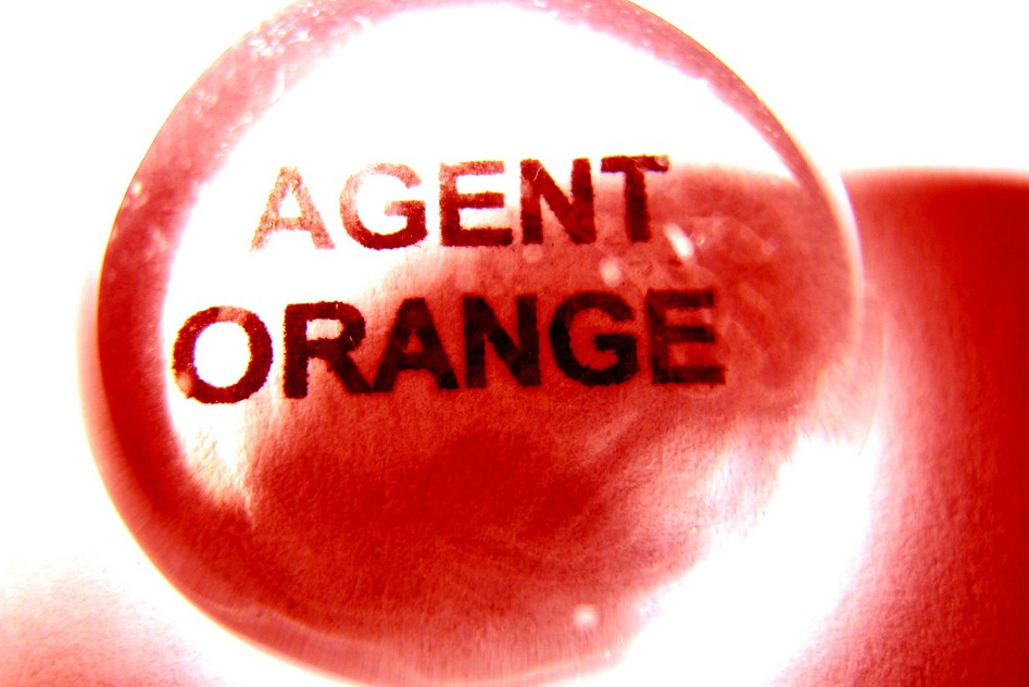 """Magnified text that reads """"AGENT ORANGE"""" over an orange background."""