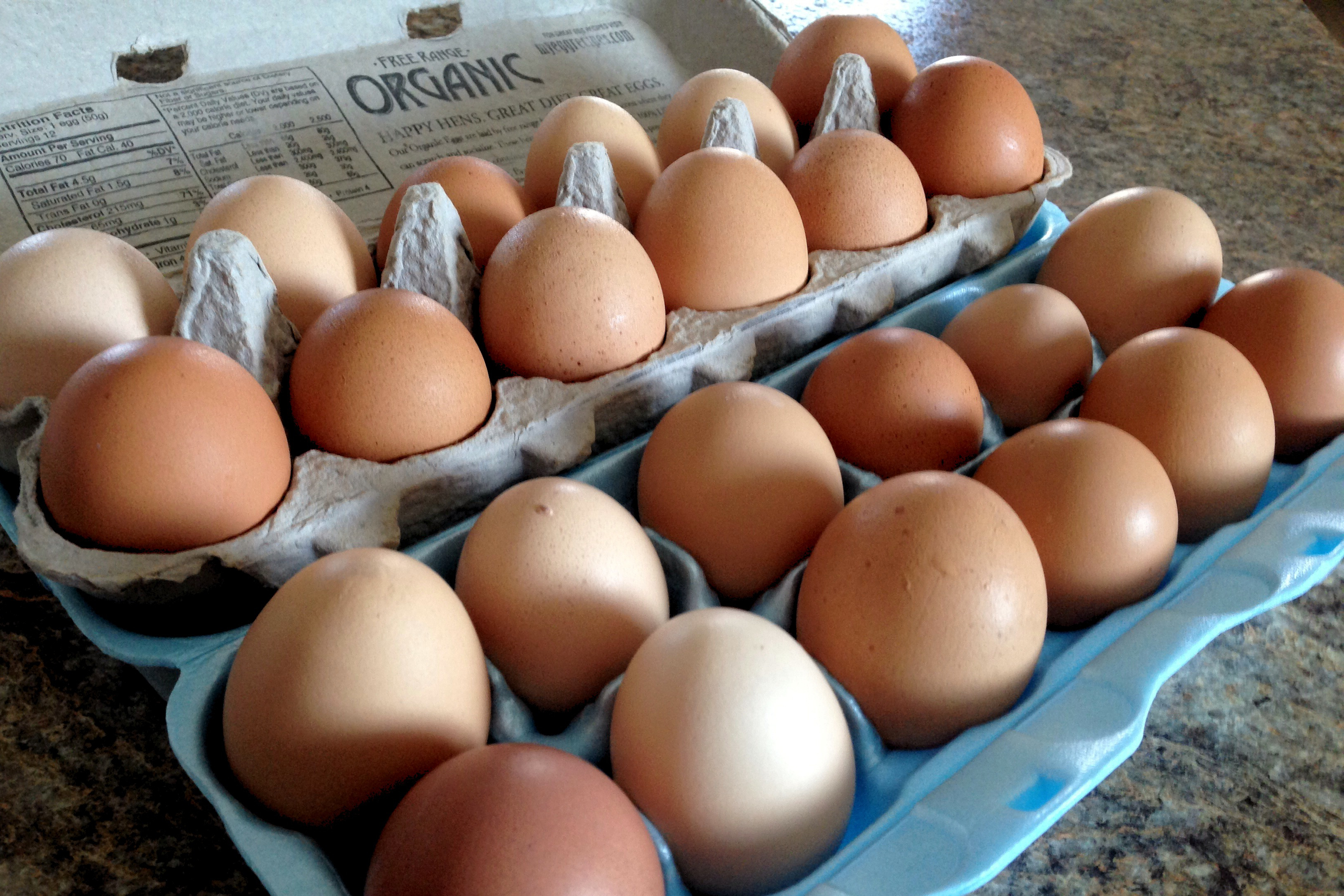 """Eggs with packaging labeled """"organic"""""""
