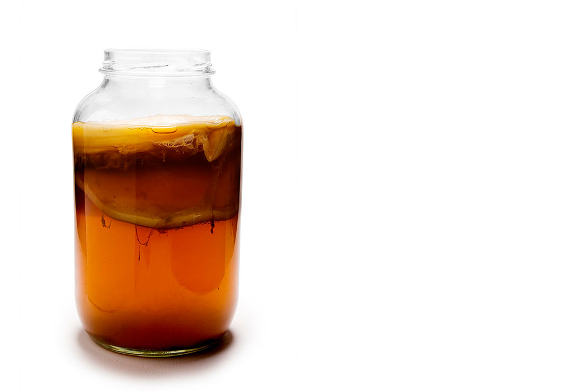 jar of kombucha with scoby