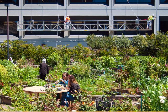 Agrihoods are planned communities built around a farm or other local food source.