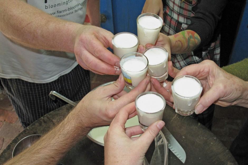eggnog cheers
