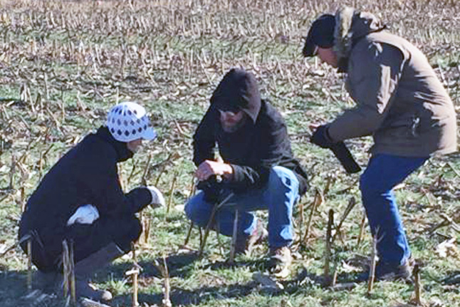 researchers in a field