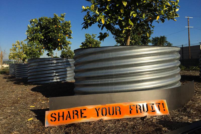 Fallen Fruit's public art installations