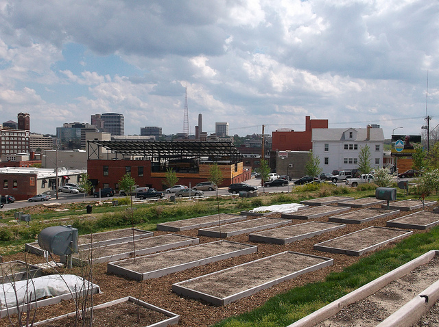 "Many lots occupied by community gardens and farms are still deemed ""vacant"" by city government, leaving them vulnerable to development. (Christopher Moverton/Flickr)"